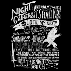 Camiseta Night Watch