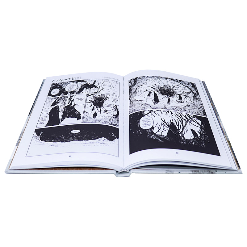Livro A Menina do Outro lado - Vol. 2