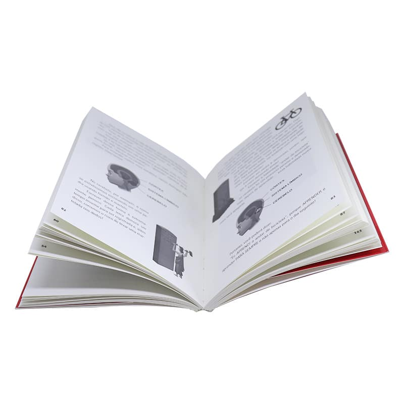 Livro Estimulando inteligência - Pierluigi Piazzi